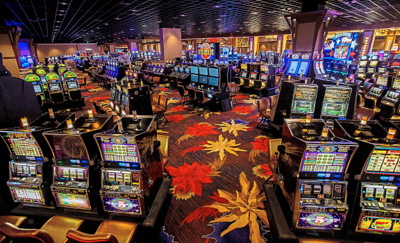 Top Online Gambling Choices